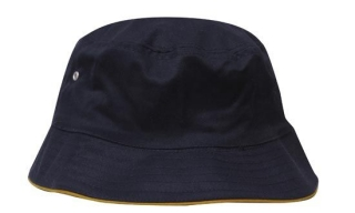 4223_navy_and_gold.jpg