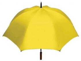 2070_yellow.jpg